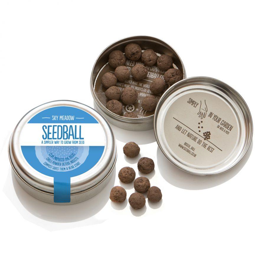 seedball_product-sky_meadow-06