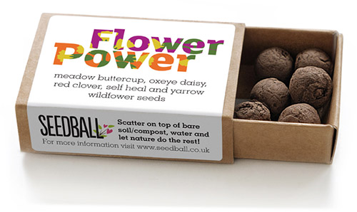 Seedball-matchbox-BeeMix-SINGLE-FlowerPower-lr