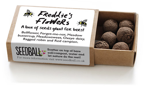 Seedball-matchbox-BeeMix-SINGLE-FreddiesFlowers-lr