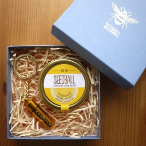 Seedball Bee Rescue Kit