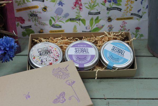 Pick and Mix Gift Box Image