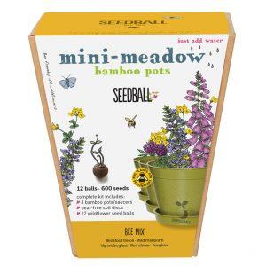 Seedball Mini Meadow Bamboo Pots