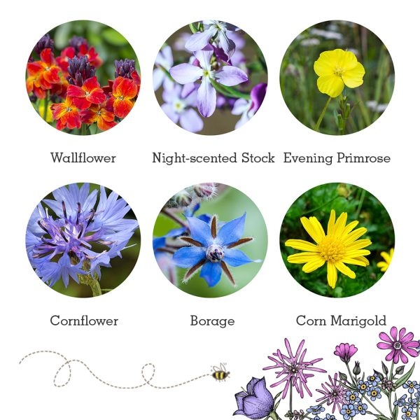 Seedball Bat Mix Flowers