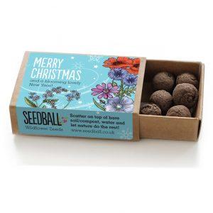 Seedball Christmas Matchbox