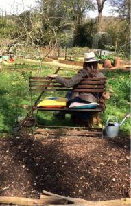 Person on Bench at Allotment