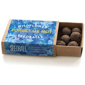 Seedball Forget-Me-Not Matchbox