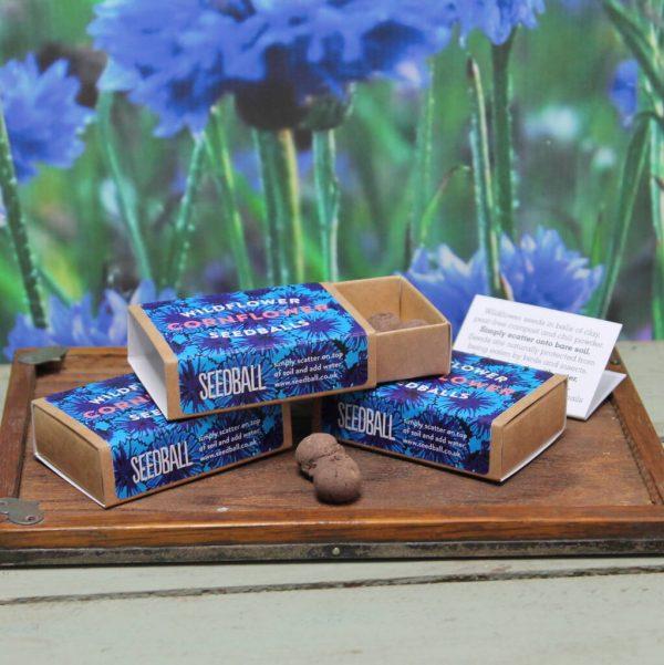 Seedball Cornflower Matchbox