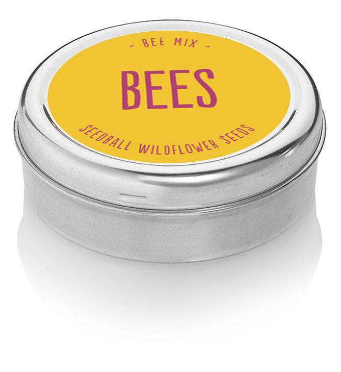 Seedball Bee Tin