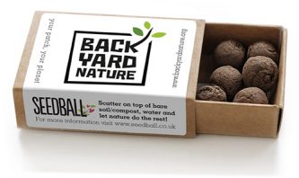 Seedball-matchbox-BeeMix-SINGLE-BackYardNature-lr