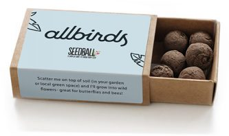 Seedball-matchbox-BeeMix-SINGLE-allbirds-lr